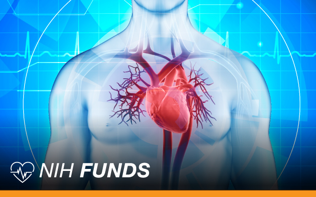 U.S. heart patients, economy could suffer without more medical research